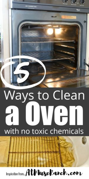Clean Oven Naturally