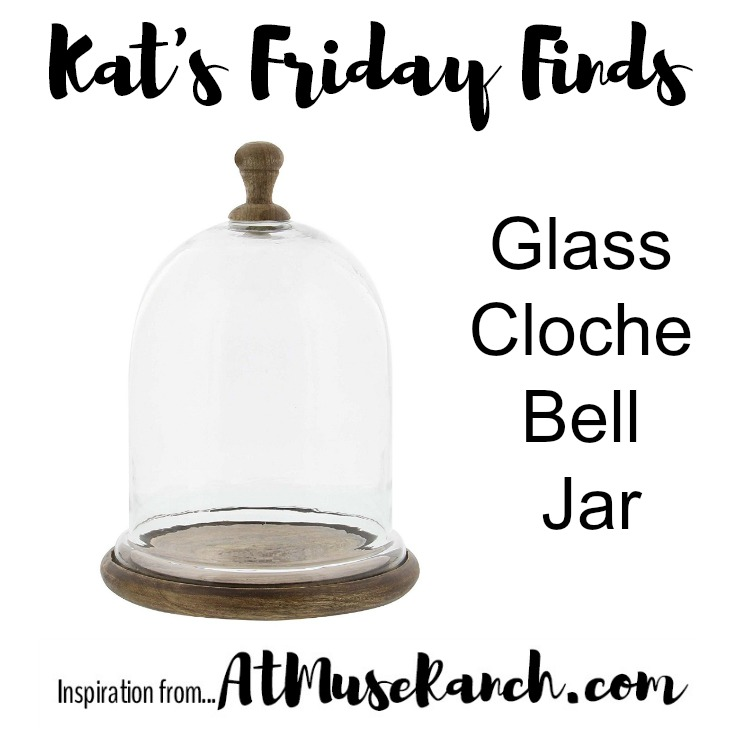 Glass Cloche Bell Jar